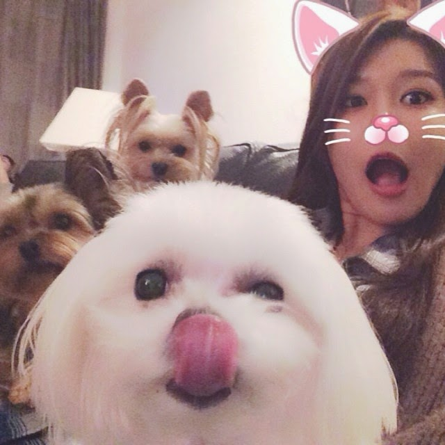 a1400-snsdsooyoungwithpets1